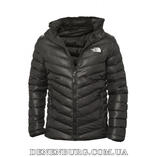 Куртка мужская демисезонная THE NORTH FACE 19-18803 чёрная